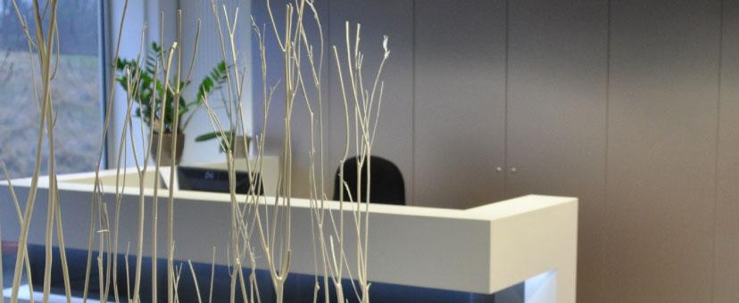 Cabinet A Trait. Architecture Intérieure